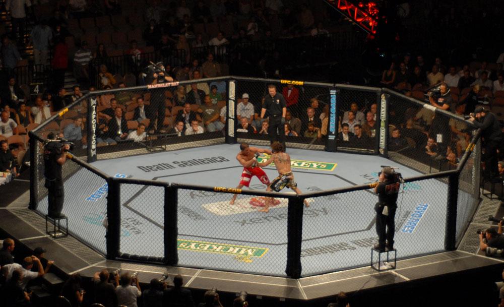 ウィリアムヒル UFC/MMA